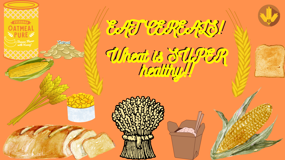 Whole Grains and Their Benefit for OurBody