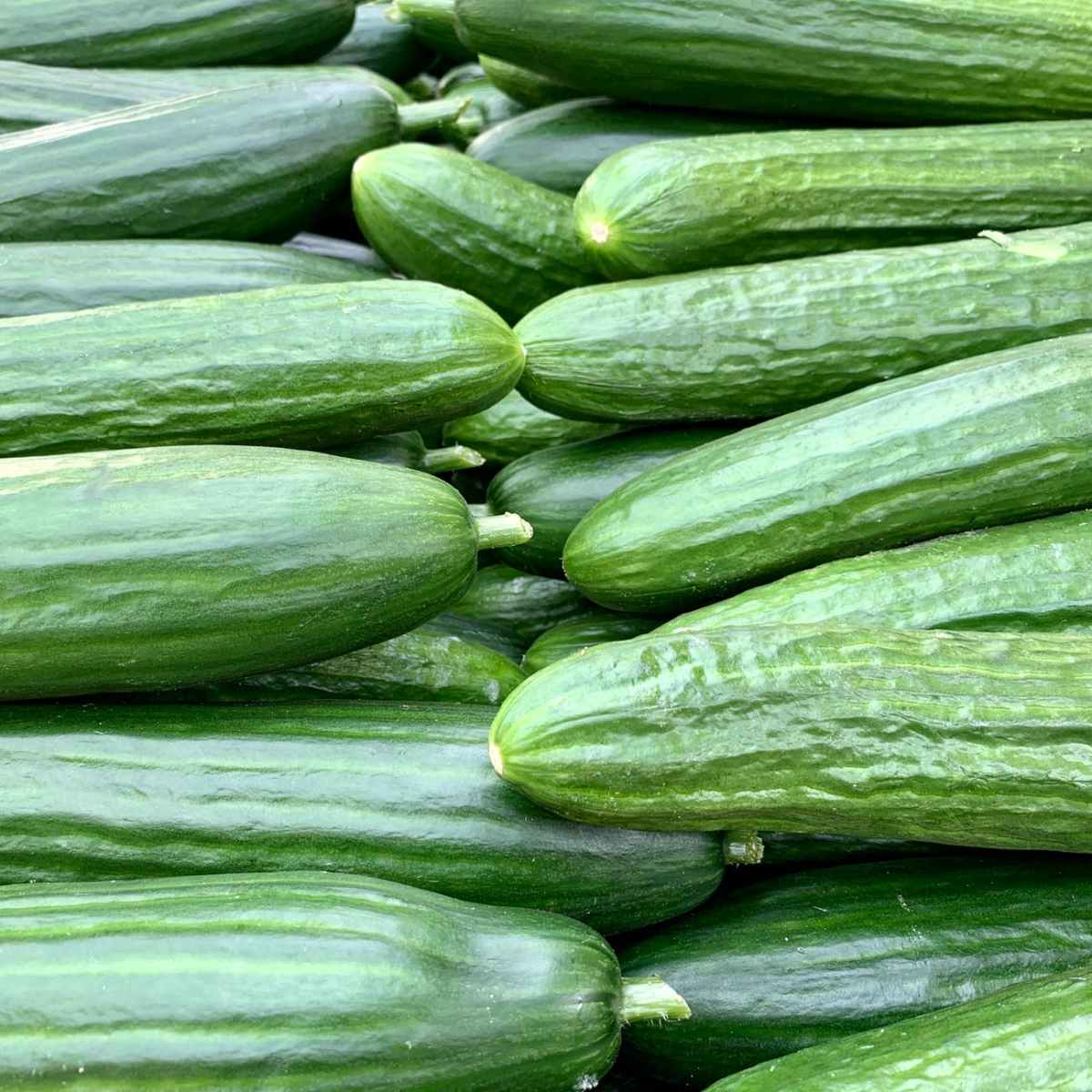 Cucumber | The Wonderful Benefits for Skin and TheBody